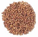 Whole Coriander (1 oz)