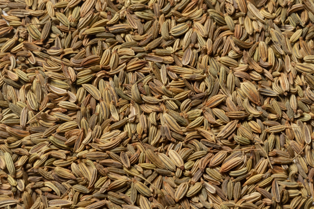 Whole Fennel Seed (1 lb.)